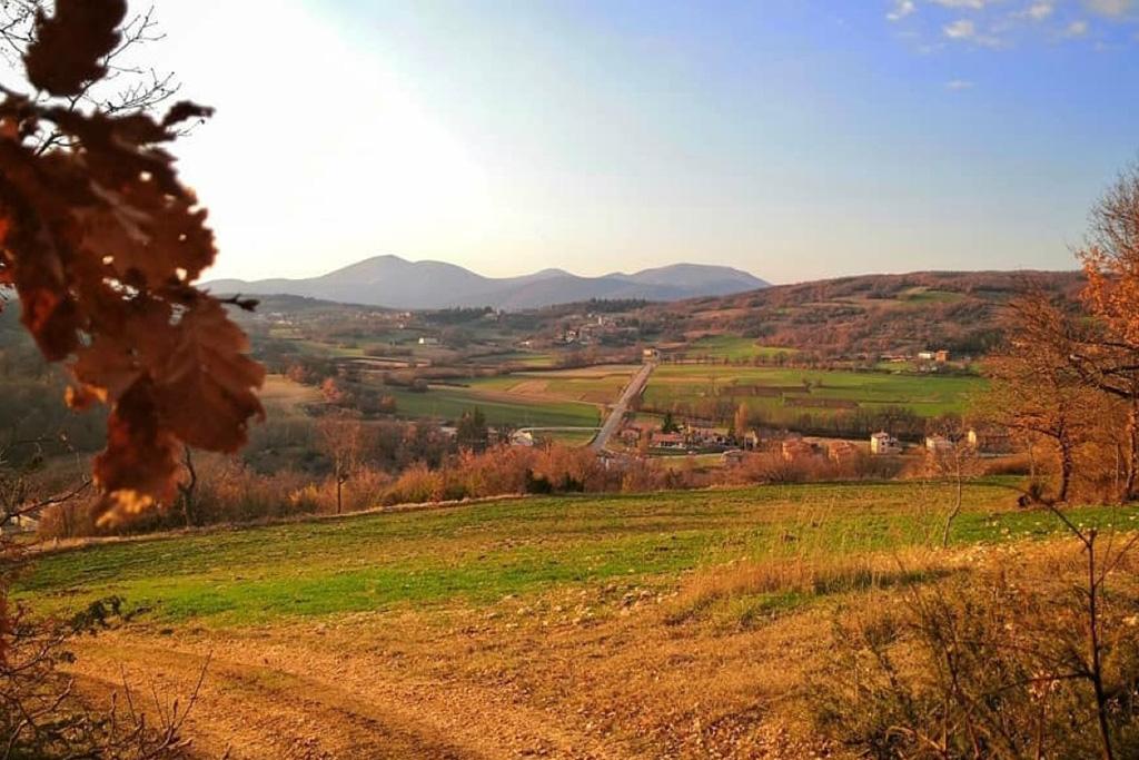 Passeggiata panoramica a Monte di Colle da Avendita